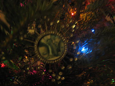 tree09family.jpg
